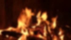 Giresun'da orman yangını
