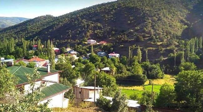 Çamoluk'ta bir köy karantinaya alındı