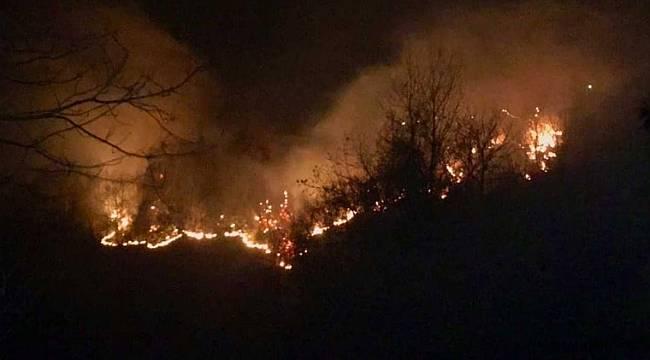 Tirebolu Kovancık Köyü mevkiinde orman yangını